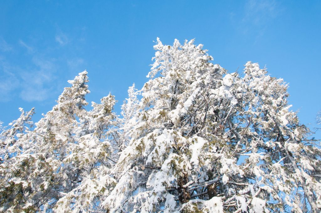 Сьерра Невада в Испании горнолыжный курорт